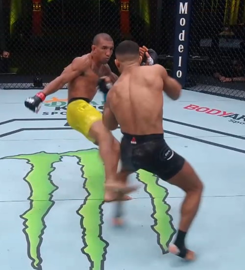 Raoni Barcelos leg kicks Khalid Taha