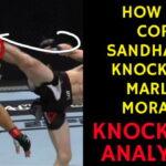 Cory Sandhagen KNOCKS OUT Marlon Moraes - KO Analysis